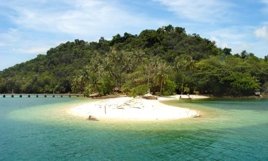 sandy beach surrounded by woods