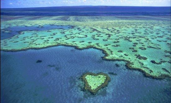 whitsundays land and water