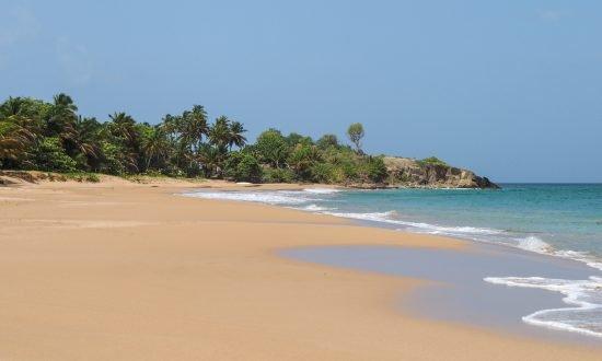 sandy beach in guadeloupe island