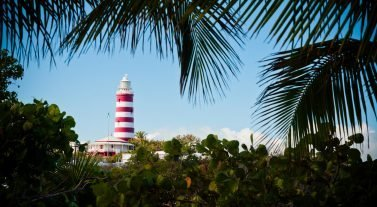 Throw the bushes view of lighthouse at elbow cay Abaco