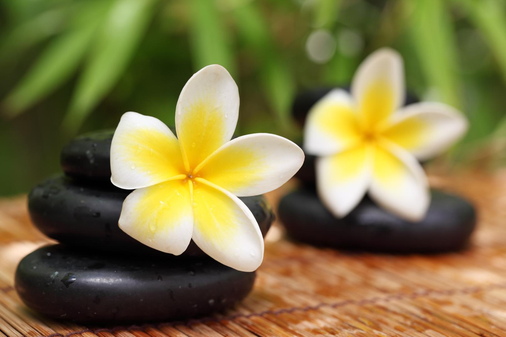 Fleur de tiaré Croisière à Tahiti Dream Yacht Charter
