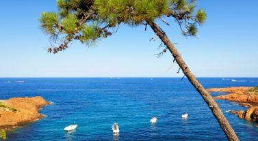 Crusing the Mediterranean in 2020