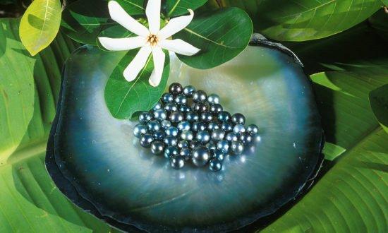 Tahiti Black Pearls