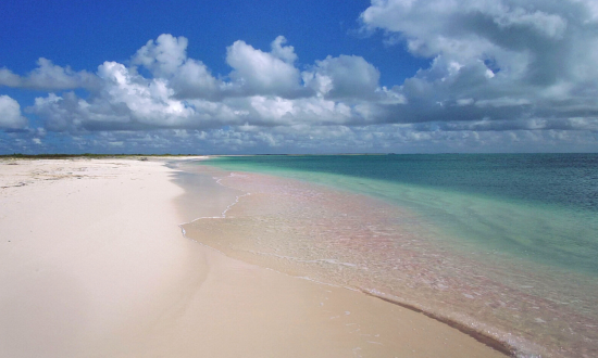 Barbuda sands